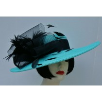 "Aqua 5"" Brim-Black Feather"