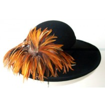 "Black 3"" Picture/ Rust Feathers"