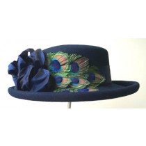 Navy Gambler/Peacock Feathers