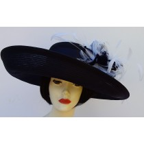 Navy Sheer Up Brim-Feather