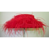 Red Gambler/ Ostrich