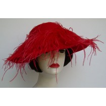 Red Large Picture/Ostrich Feather