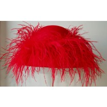 Red Small Picture/Ostrich Feather
