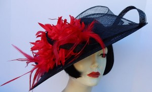 Black Profile Red Feather